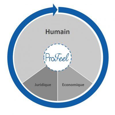 Concept ProFeel schématisé